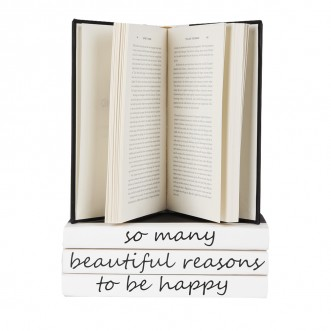 "4 volume quote as shown. ""there are so many beautiful reasons to be happy"" Insel"