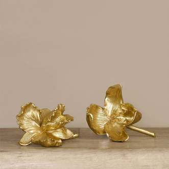 Golden Orchid- Small Insel
